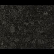 Labrador_Angola_Black